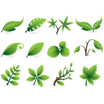 green leaf icons 2